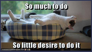 So much to do. So little desire to do it.