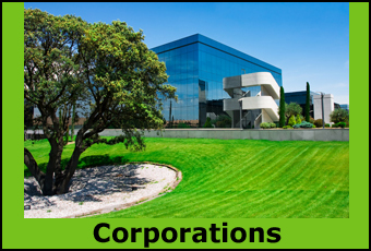 The Corporations and Companies that offer home business opportunity structures.