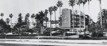History Of Beverly Hills Hotel Dorchester Collection