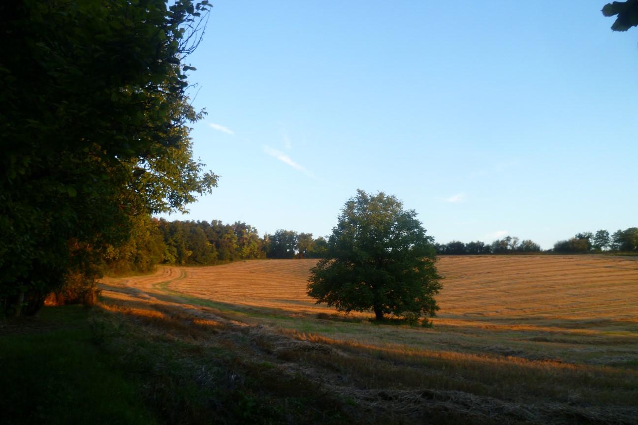 Dordogne.Exterior