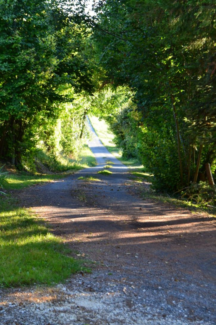 Nearby country lane