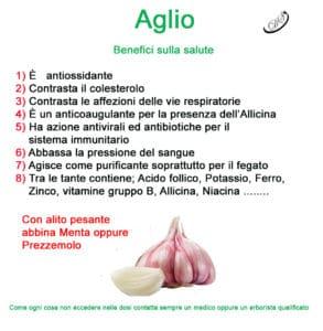 proprietà e benefici dell'aglio