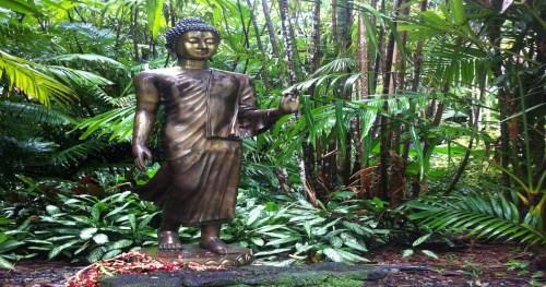 Buddha Was Born…
