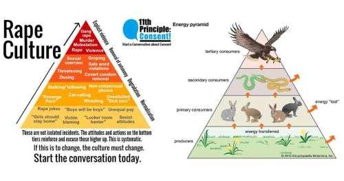 Casual Sexism, Rape Culture, Sexual Predators, Producers, Energy Pyramid, and Apex Predators