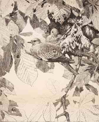 GE Collins, Bird in Chestnut Tree