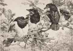GE Collins, Four Birds in Oak Tree