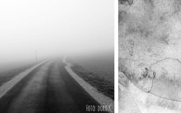 Herbst im Nebel - Fotos in schwarz/weiß | www.dorokaiser.online.de