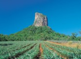 032029 Glass House Mountains Mount Coonowrin