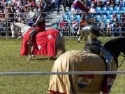 abbey-festival011