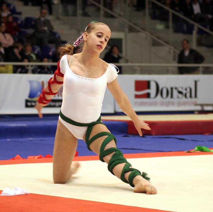 Dorsal e la ginnastica artistica mondiale  Dorsal