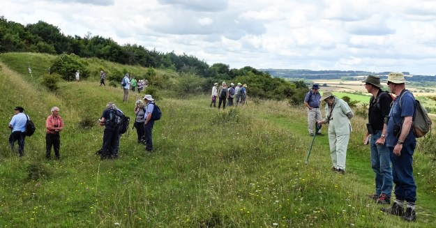 Group of people spread out across an area of downland