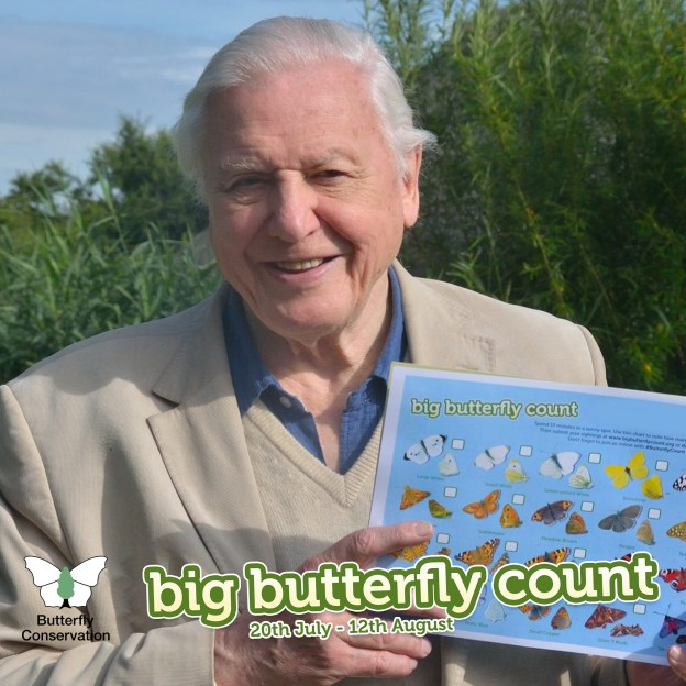 Sir David Attenborough holding a Big Butterfly Count recording form