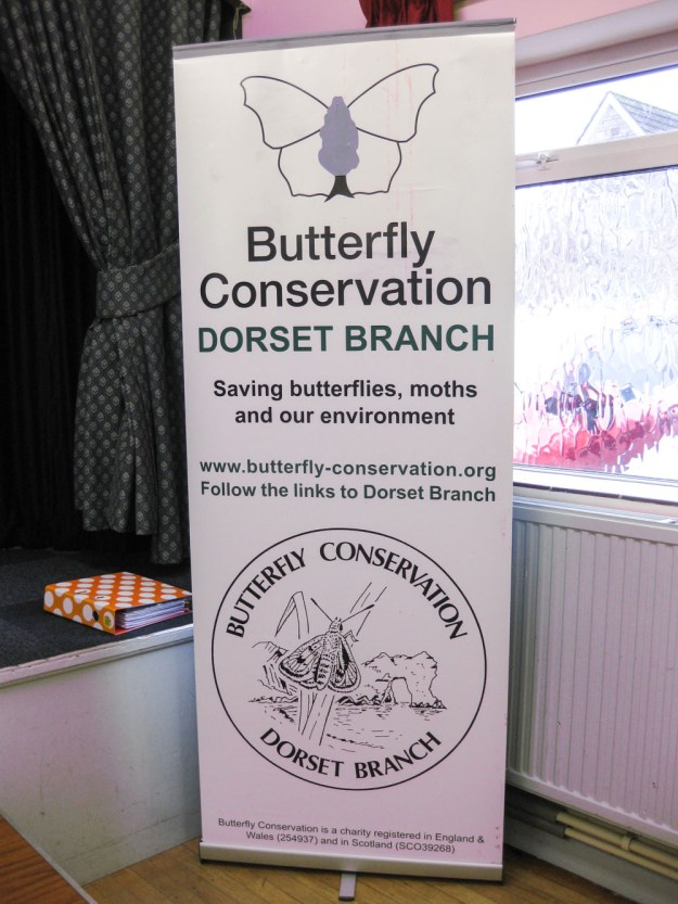 Tall narrow banner advertising Dorset Branch of Butterfly Conservation