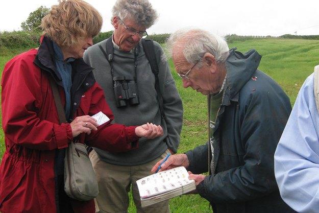 Surveyors examine specimen