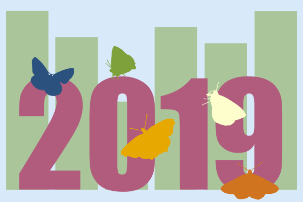 2019 butterfly and chart silhouettes