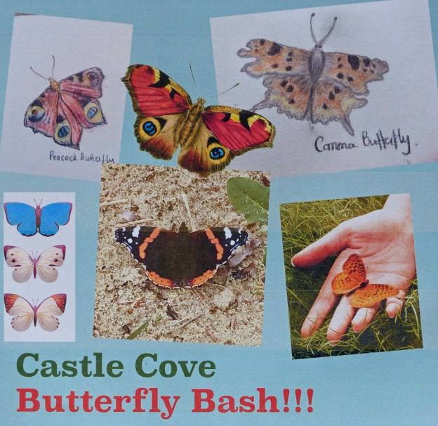 View of an advertising poster showing various butterflies