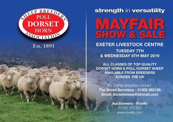 Dorset Horn Sheep Breeders Association - Year of Clean Water