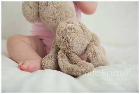 Studio baby with teddy