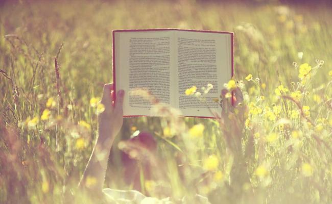 livro-post-agosto-tumblr