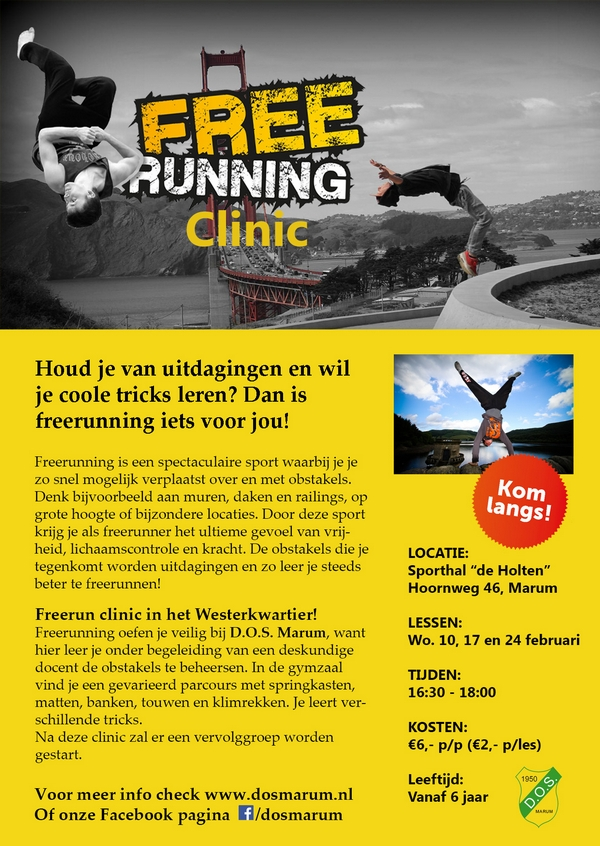 Flyer Freerunning-600