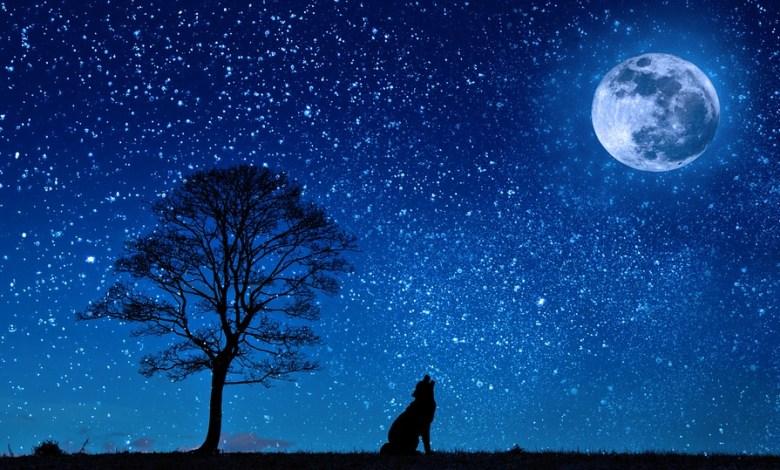 V senčnih predelih Lune se temperatura ne dvigne nad minus 157 stopinj Celzija,