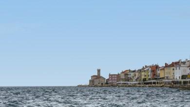 Photo of Tradicionalni skoki v morje z ogromno udeležbo