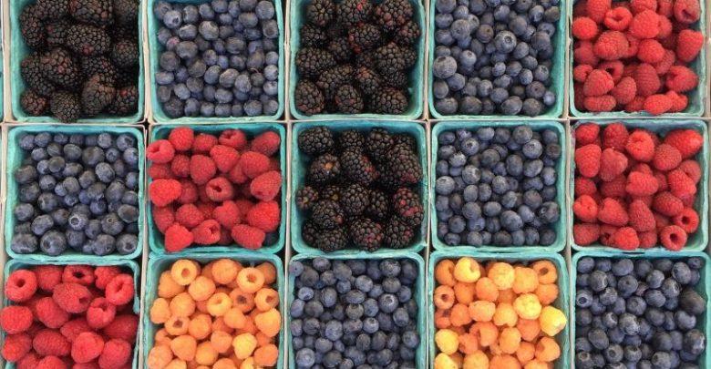 zelenjava, jagodičevje, zelje, blitva, zdravo sadje, sadje za zdravje, zniževanje holesterola, vitamin B6, antioksidanti, hranilne snovi, sadni sladkor