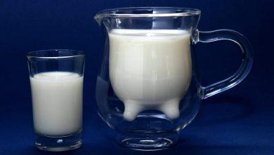 Photo of Kljub laktozni netoleranci smo mleko pili že v prazgodovini