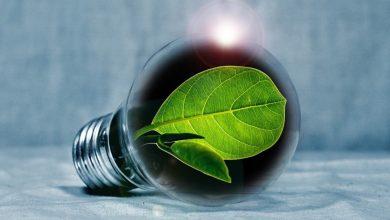 Photo of Študenti razvili številne okolju prijazne projekte