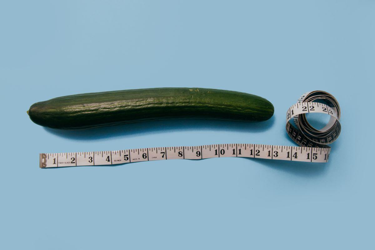 penis, moški spolni ud, kako izgleda penis, kako bi naj izgledal penis, miti o penisu, velikost penisa, povprečna velikost penisa, kako velik je povprečen penis, pornografija, miti iz pornografije, pornografija in realnost, negotov glede svojega penisa