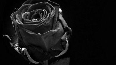 Photo of Ali poznaš temno in krvavo zgodovino Valentinovega?