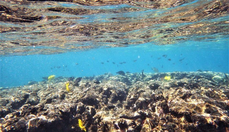raziskati pod vodo, vodi, voda, potapljanje, jame, jama, Plavanje,