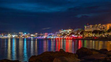 Photo of Na filmski tržnici v Cannesu tudi slovenski filmi
