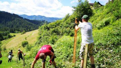 Photo of Mariborski študenti priskočili na pomoč tudi kmetiji v Radljah