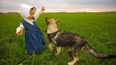 Photo of Igra s človekom psom dolgoročno pomaga pri učenju