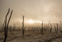 Photo of Podnebne spremembe glavni krivec za podvojitev naravnih nesreč od leta 2000
