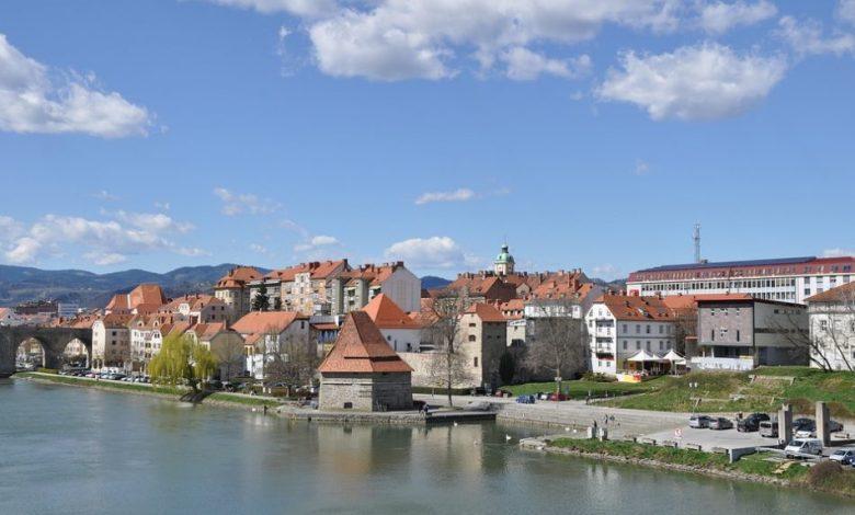 Festival Mladi Maribor, Virtualni karierni sejem
