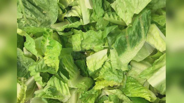 romaine lettuce edit_1523736780511.jpg_39877994_ver1.0_640_360_1524260106410.jpg.jpg