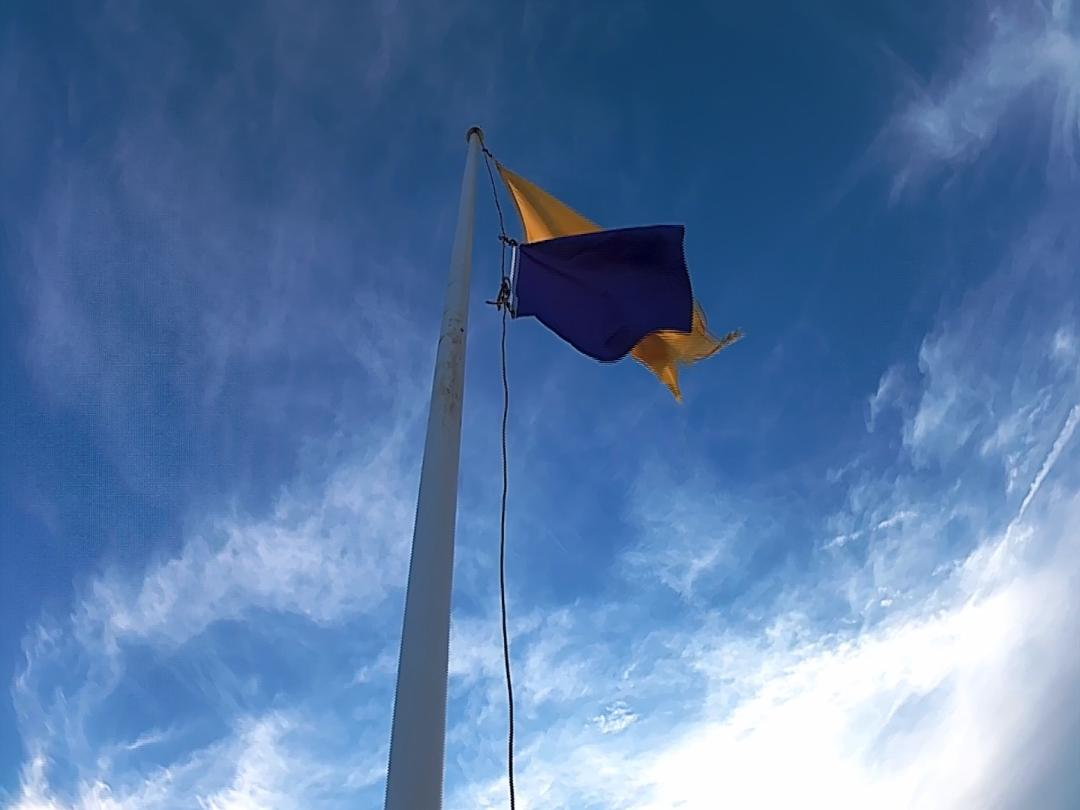 purple flag_1530061732653.jpg.jpg