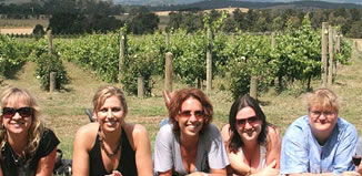 Chillout Travel Winery Tours – Yarra Valley