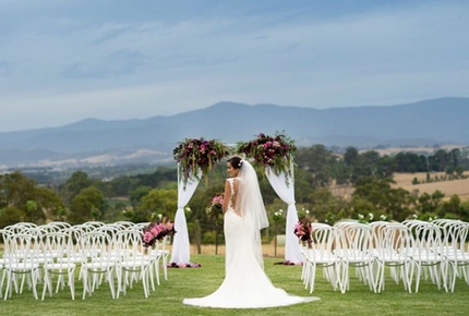 Weddings-Vines-Helens-Hill