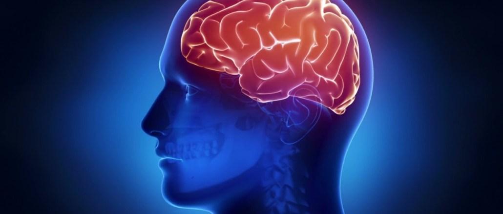 Sclerosi multipla, disfunzioni sinaptiche e cognitive, studio italiano a Perugia