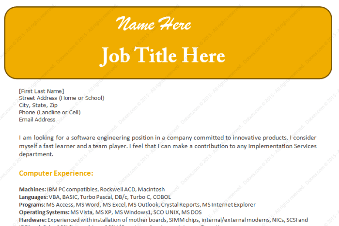 Software Engineer Sample Resume Template
