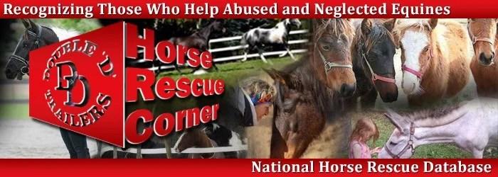 DD - Horse Rescue Corner