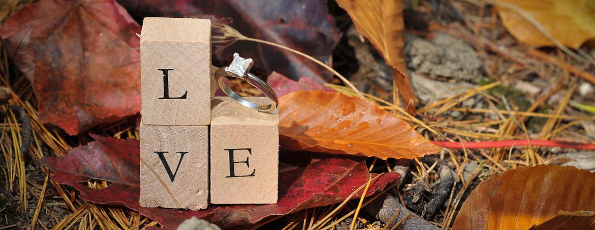 Letter blocks with wedding ring that spells love.