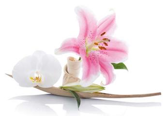Douceur de Vivre  Mille et une fleurs