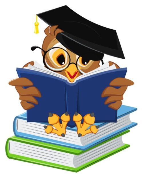 Doučování účetnictví na maturitu