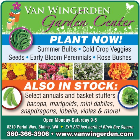 Van Wingerden advertisement from the 2014 April 10 issue of The Northern Light.