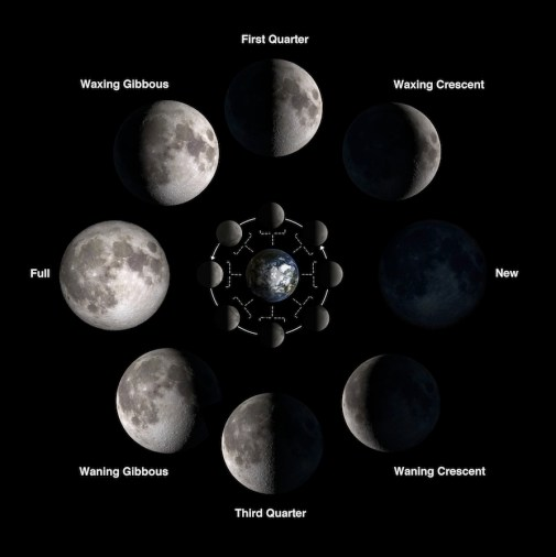 The phases of the moon. Image courtesy of NASA.
