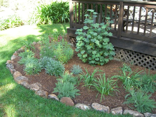 softscape - doughty landscaping